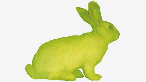 GFP Bunny from Oregon Digital Collection
