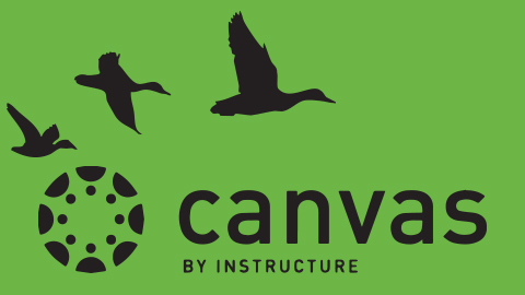 Canvas LMS logo with silhouettes of flying ducks