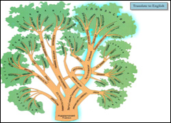 Russian and Slavic Language Tree