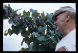 kesey with grapes